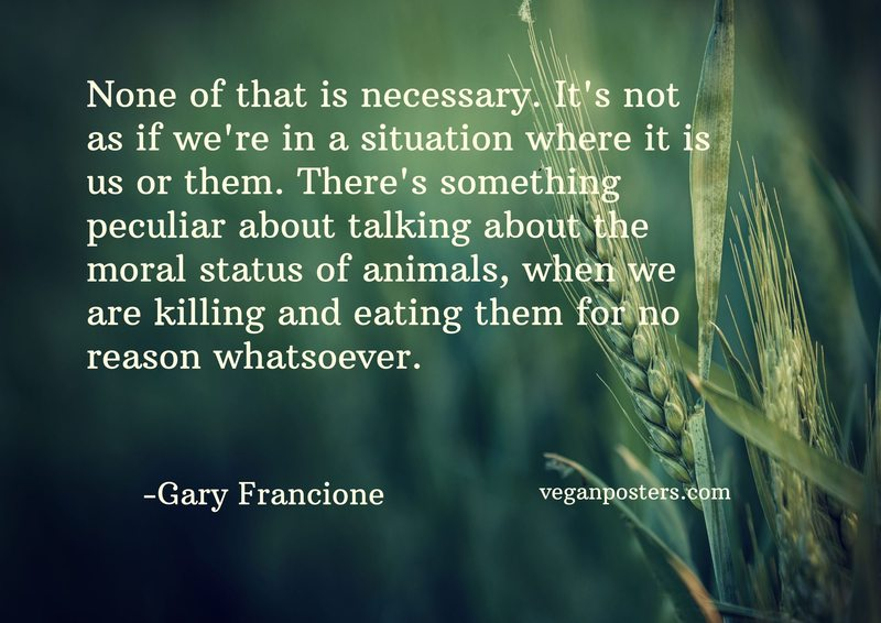None of that is necessary. It's not as if we're in a situation where it is us or them. There's something peculiar about talking about the moral status of animals, when we are killing and eating them for no reason whatsoever.