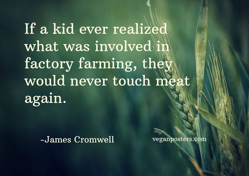 If a kid ever realized what was involved in factory farming, they would never touch meat again.