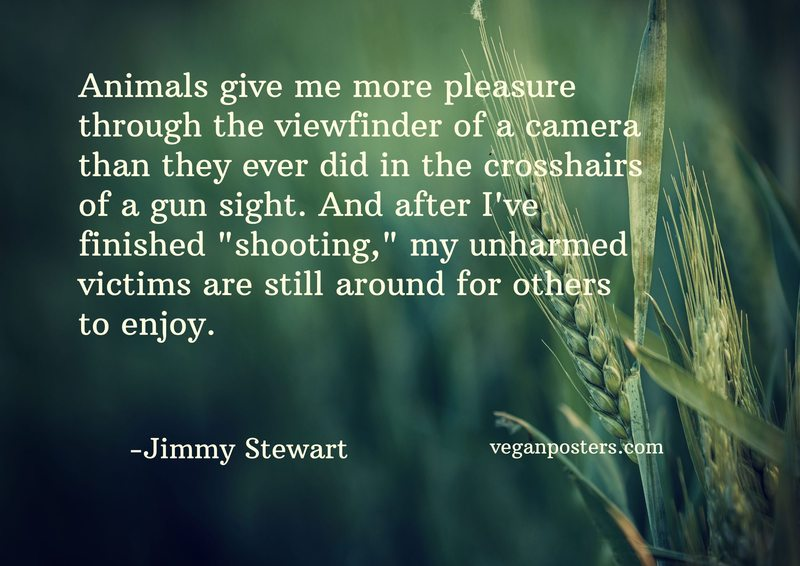"Animals give me more pleasure through the viewfinder of a camera than they ever did in the crosshairs of a gun sight. And after I've finished ""shooting,"" my unharmed victims are still around for others to enjoy."