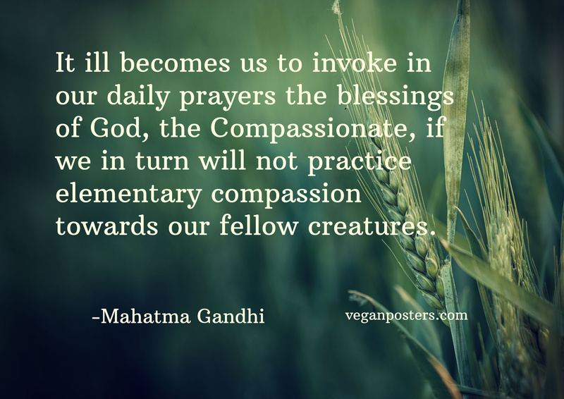 It ill becomes us to invoke in our daily prayers the blessings of God, the Compassionate, if we in turn will not practice elementary compassion towards our fellow creatures.
