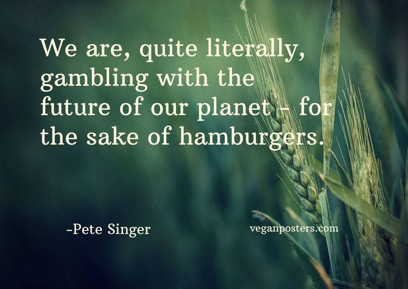 We are, quite literally, gambling with the future of our planet - for the sake of hamburgers.