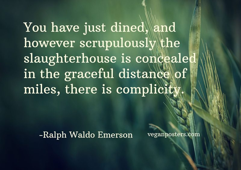 You have just dined, and however scrupulously the slaughterhouse is concealed in the graceful distance of miles, there is complicity.