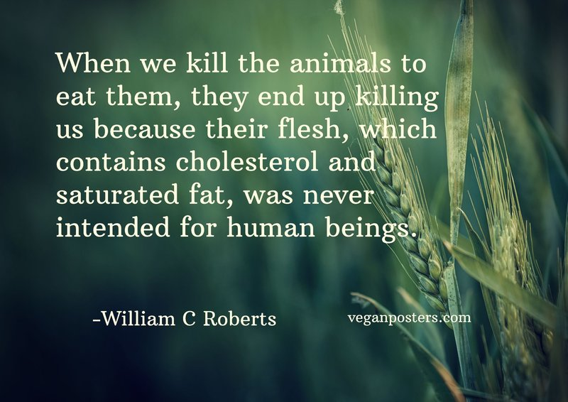 When we kill the animals to eat them, they end up killing us because their flesh, which contains cholesterol and saturated fat, was never intended for human beings.