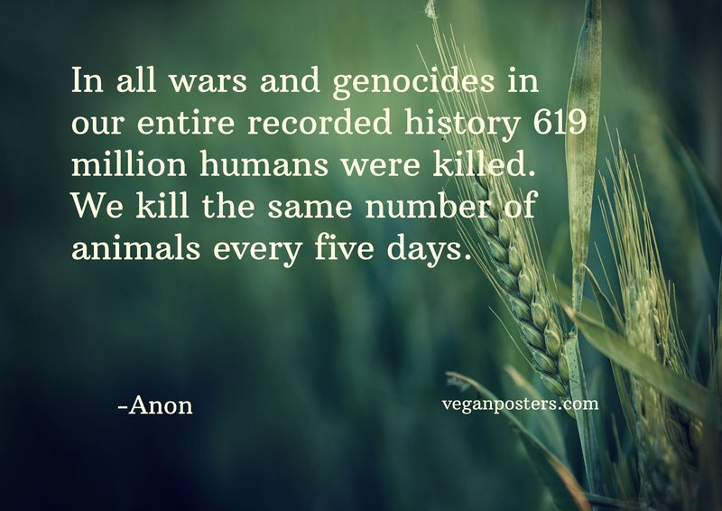 In all wars and genocides in our entire recorded history 619 million humans were killed. We kill the same number of animals every five days.