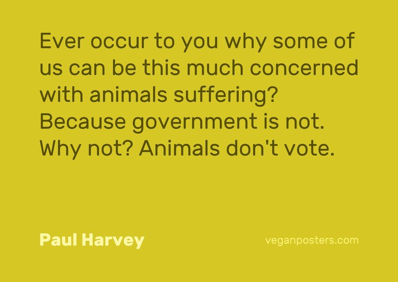 Ever occur to you why some of us can be this much concerned with animals suffering? Because government is not. Why not? Animals don't vote.