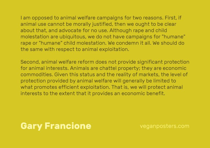 "I am opposed to animal welfare campaigns for two reasons. First, if animal use cannot be morally justified, then we ought to be clear about that, and advocate for no use. Although rape and child molestation are ubiquitous, we do not have campaigns for ""humane"" rape or ""humane"" child molestation. We condemn it all. We should do the same with respect to animal exploitation. 