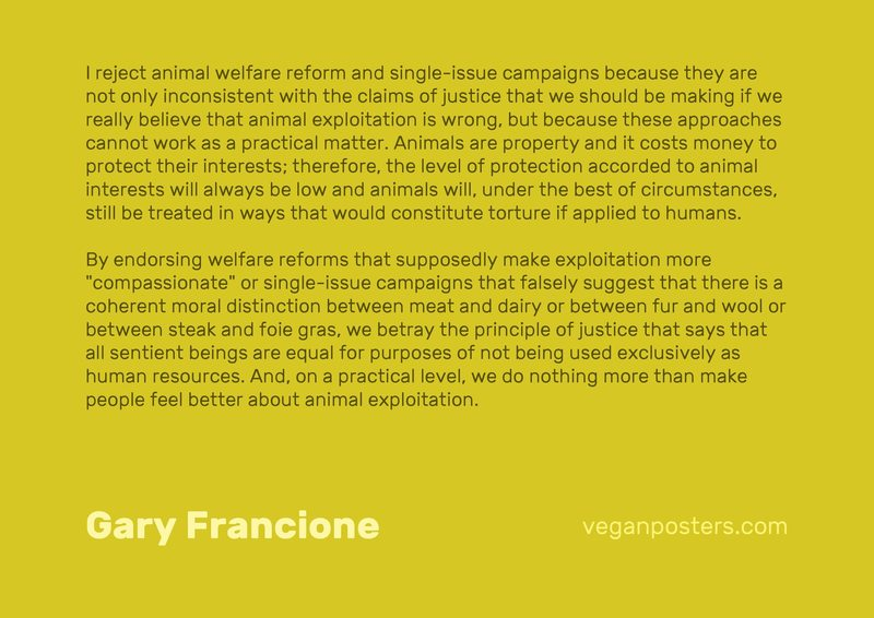 """I reject animal welfare reform and single-issue campaigns because they are not only inconsistent with the claims of justice that we should be making if we really believe that animal exploitation is wrong, but because these approaches cannot work as a practical matter. Animals are property and it costs money to protect their interests; therefore, the level of protection accorded to animal interests will always be low and animals will, under the best of circumstances, still be treated in ways that would constitute torture if applied to humans.  By endorsing welfare reforms that supposedly make exploitation more """"compassionate"""" or single-issue campaigns that falsely suggest that there is a coherent moral distinction between meat and dairy or between fur and wool or between steak and foie gras, we betray the principle of justice that says that all sentient beings are equal for purposes of not being used exclusively as human resources. And, on a practical level, we do nothing more than make people feel better about animal exploitation."""