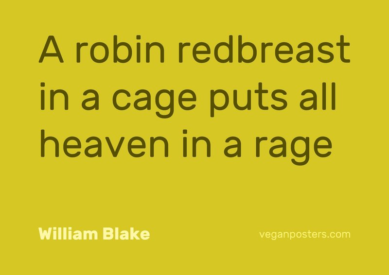 A robin redbreast in a cage puts all heaven in a rage