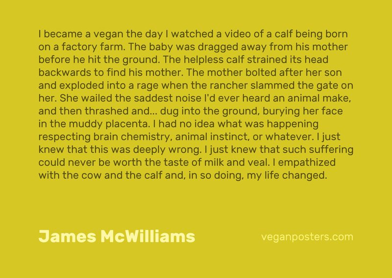 I became a vegan the day I watched a video of a calf being born on a factory farm. The baby was dragged away from his mother before he hit the ground. The helpless calf strained its head backwards to find his mother. The mother bolted after her son and exploded into a rage when the rancher slammed the gate on her. She wailed the saddest noise I'd ever heard an animal make, and then thrashed and... dug into the ground, burying her face in the muddy placenta. I had no idea what was happening respecting brain chemistry, animal instinct, or whatever. I just knew that this was deeply wrong. I just knew that such suffering could never be worth the taste of milk and veal. I empathized with the cow and the calf and, in so doing, my life changed.