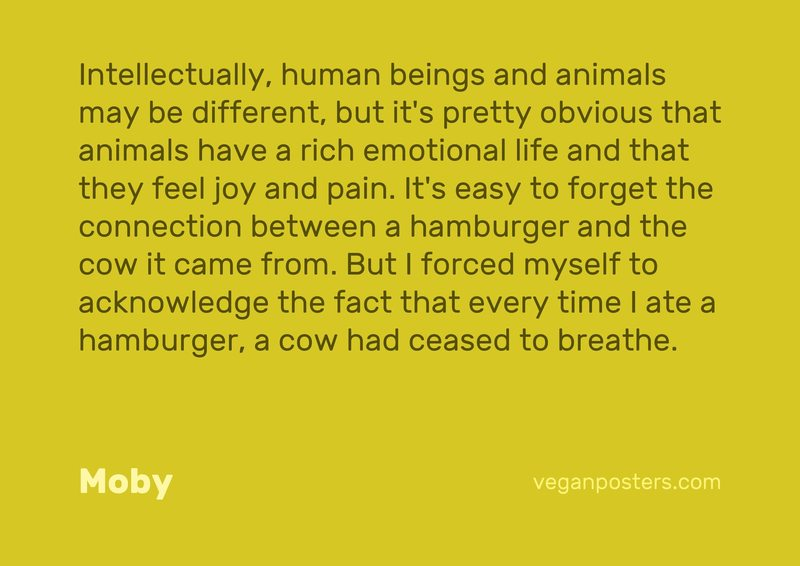 Intellectually, human beings and animals may be different, but it's pretty obvious that animals have a rich emotional life and that they feel joy and pain. It's easy to forget the connection between a hamburger and the cow it came from. But I forced myself to acknowledge the fact that every time I ate a hamburger, a cow had ceased to breathe.