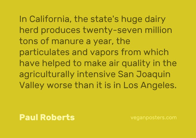 In California, the state's huge dairy herd produces twenty-seven million tons of manure a year, the particulates and vapors from which have helped to make air quality in the agriculturally intensive San Joaquin Valley worse than it is in Los Angeles.