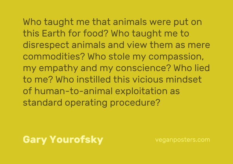 Who taught me that animals were put on this Earth for food? Who taught me to disrespect animals and view them as mere commodities? Who stole my compassion, my empathy and my conscience? Who lied to me? Who instilled this vicious mindset of human-to-animal exploitation as standard operating procedure?