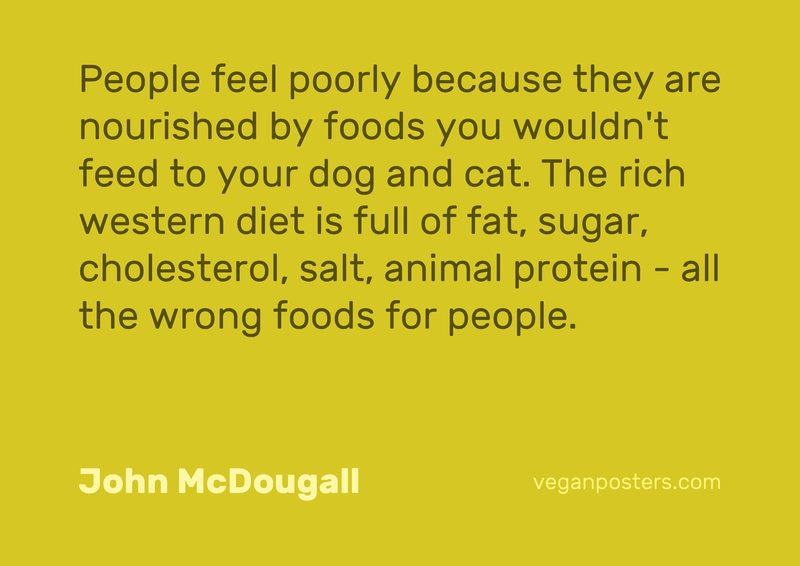 People feel poorly because they are nourished by foods you wouldn't feed to your dog and cat. The rich western diet is full of fat, sugar, cholesterol, salt, animal protein - all the wrong foods for people.