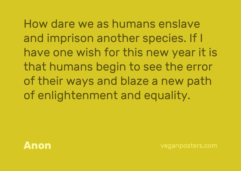 How dare we as humans enslave and imprison another species. If I have one wish for this new year it is that humans begin to see the error of their ways and blaze a new path of enlightenment and equality.