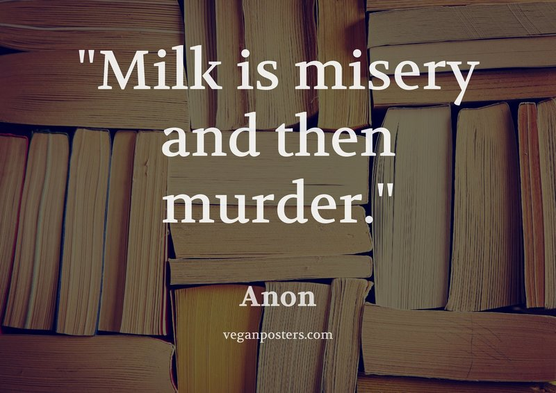 Milk is misery and then murder.
