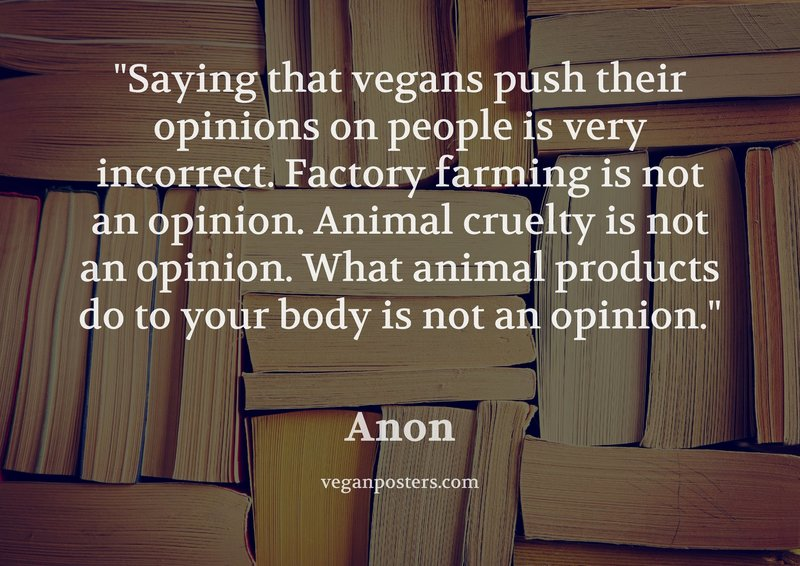 Saying that vegans push their opinions on people is very incorrect. Factory farming is not an opinion. Animal cruelty is not an opinion. What animal products do to your body is not an opinion.