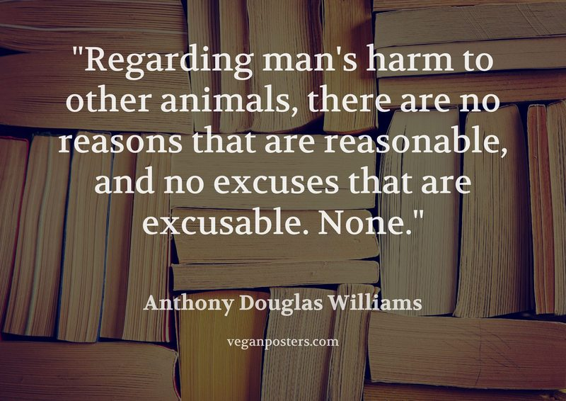Regarding man's harm to other animals, there are no reasons that are reasonable, and no excuses that are excusable. None.