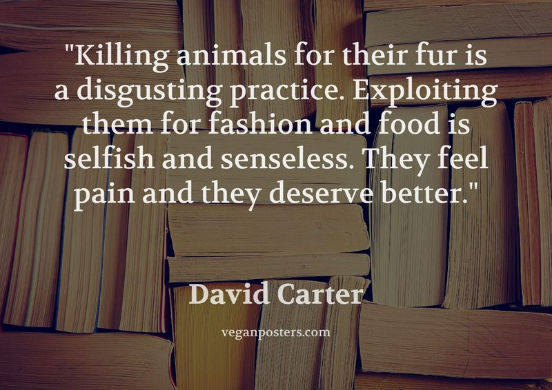 a study of the killing of animals for the purpose of education Some people think people can exploit animals for any purpose they need, while others do not think so what is your opinion same topic – a growing number of people.