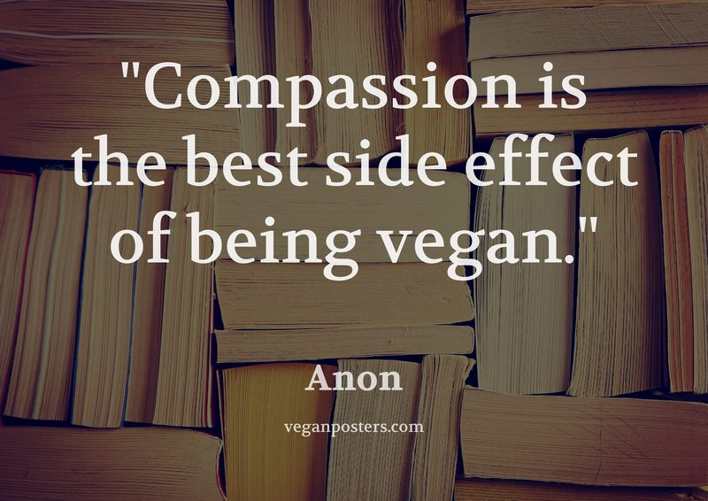 Compassion is the best side effect of being vegan.