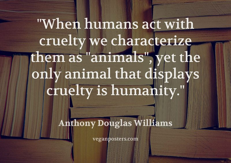 """When humans act with cruelty we characterize them as """"animals"""", yet the only animal that displays cruelty is humanity."""