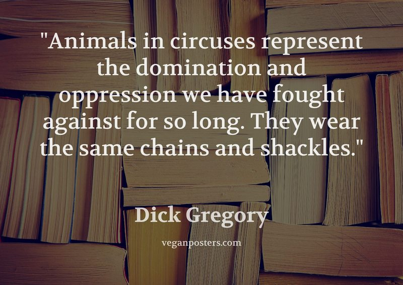 Animals in circuses represent the domination and oppression we have fought against for so long. They wear the same chains and shackles.