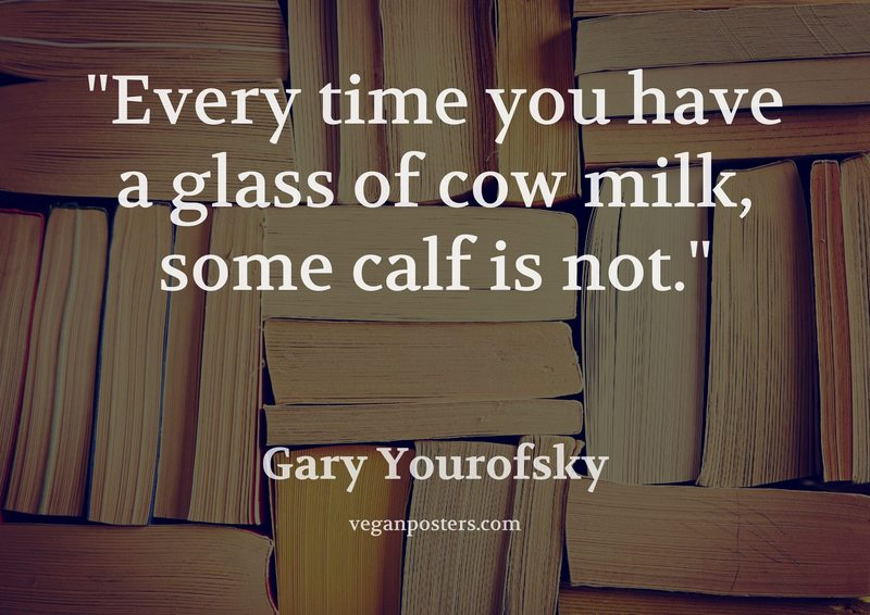 Every time you have a glass of cow milk, some calf is not.