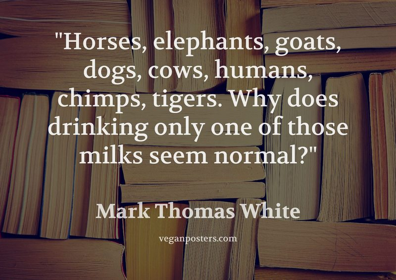 Horses, elephants, goats, dogs, cows, humans, chimps, tigers. Why does drinking only one of those milks seem normal?