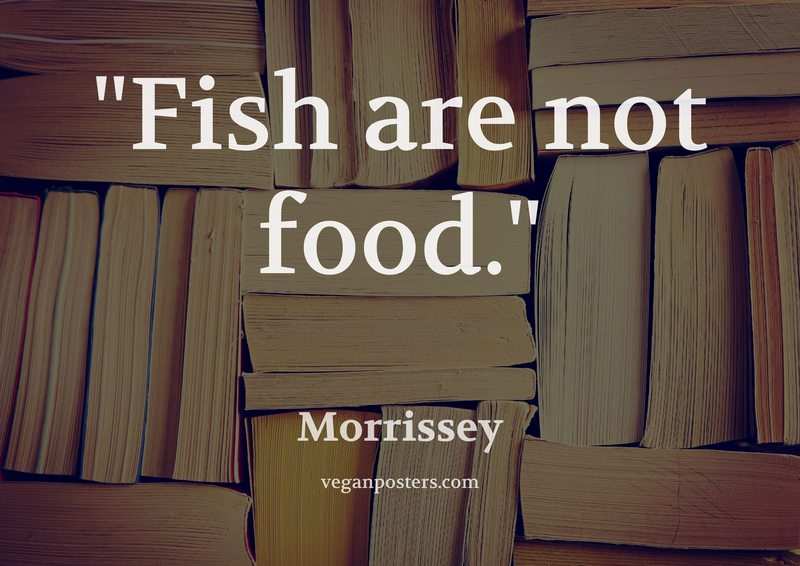 Fish are not food.