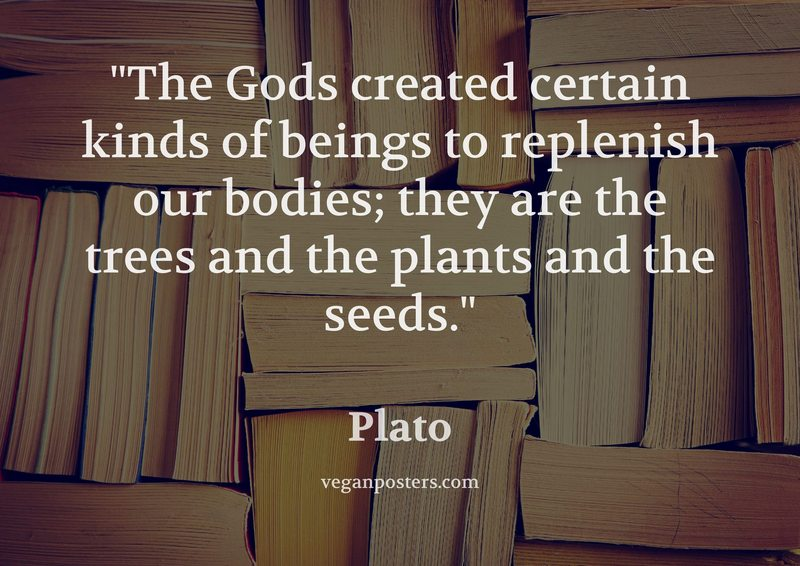 The Gods created certain kinds of beings to replenish our bodies; they are the trees and the plants and the seeds.