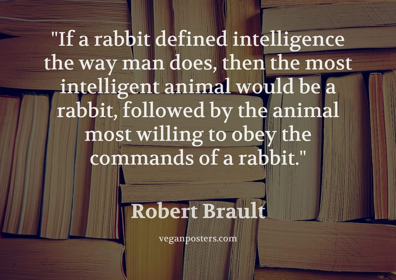 If a rabbit defined intelligence the way man does, then the most intelligent animal would be a rabbit, followed by the animal most willing to obey the commands of a rabbit.