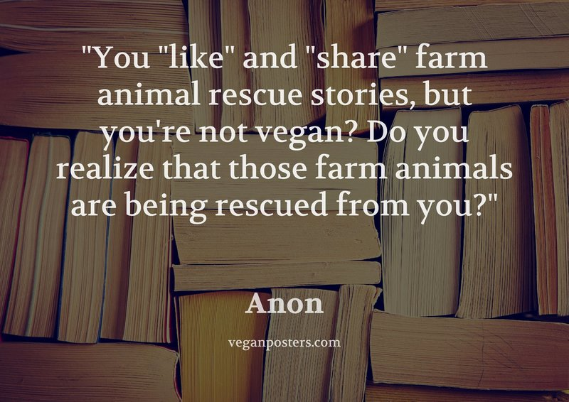 "You ""like"" and ""share"" farm animal rescue stories, but you're not vegan? Do you realize that those farm animals are being rescued from you?"