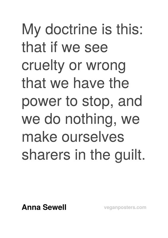 My doctrine is this: that if we see cruelty or wrong that we have the power to stop, and we do nothing, we make ourselves sharers in the guilt.
