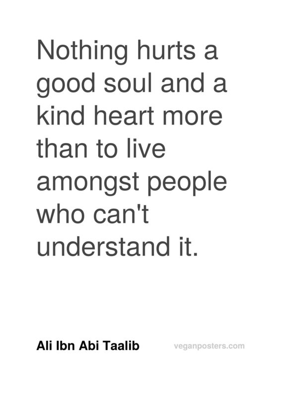 Nothing hurts a good soul and a kind heart more than to live amongst people who can't understand it.