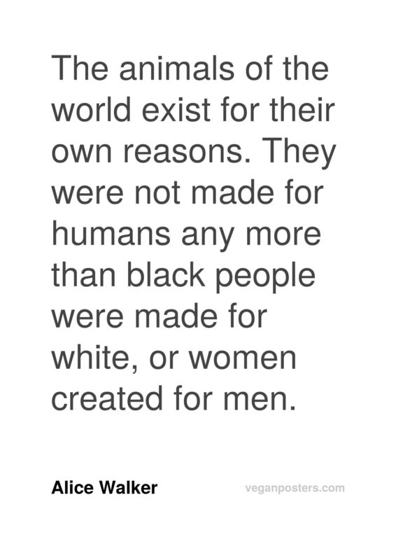 The animals of the world exist for their own reasons. They were not made for humans any more than black people were made for white, or women created for men.