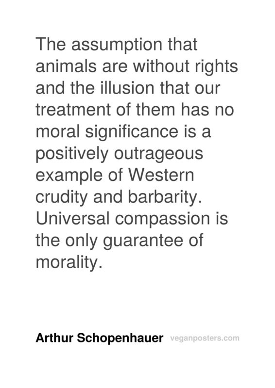 The assumption that animals are without rights and the illusion that our treatment of them has no moral significance is a positively outrageous example of Western crudity and barbarity. Universal compassion is the only guarantee of morality.