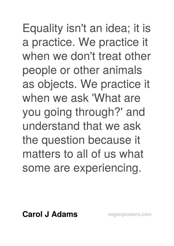 Equality isn't an idea; it is a practice. We practice it when we don't treat other people or other animals as objects. We practice it when we ask 'What are you going through?' and understand that we ask the question because it matters to all of us what some are experiencing.