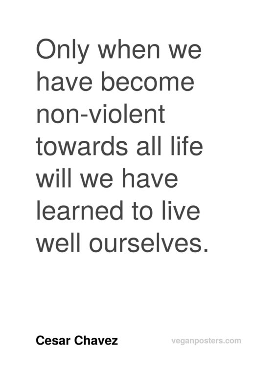 Only when we have become non-violent towards all life will we have learned to live well ourselves.