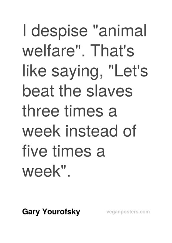 "I despise ""animal welfare"". That's like saying, ""Let's beat the slaves three times a week instead of five times a week""."