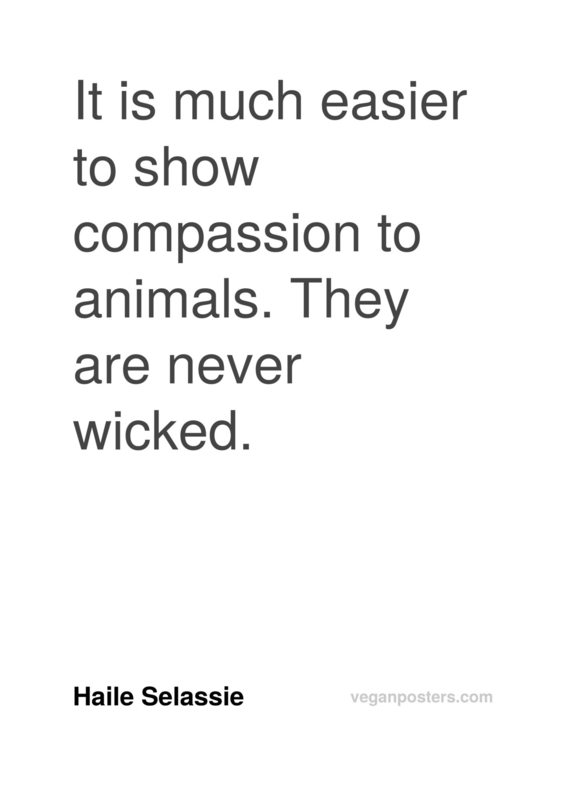 It is much easier to show compassion to animals. They are never wicked.