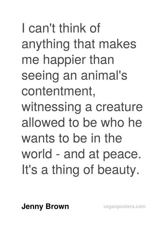 I can't think of anything that makes me happier than seeing an animal's contentment, witnessing a creature allowed to be who he wants to be in the world - and at peace. It's a thing of beauty.