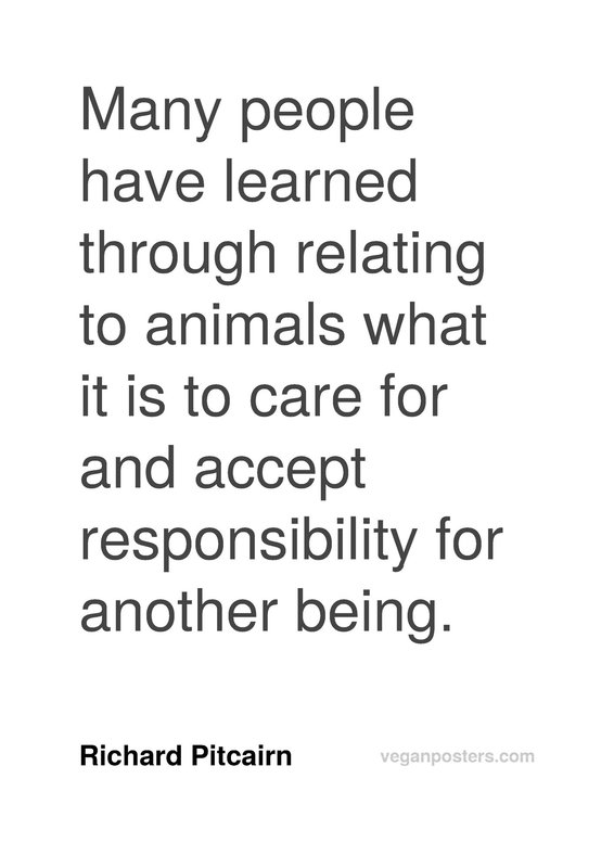 Many people have learned through relating to animals what it is to care for and accept responsibility for another being.