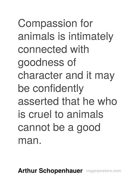 Compassion for animals is intimately connected with goodness of character and it may be confidently asserted that he who is cruel to animals cannot be a good man.