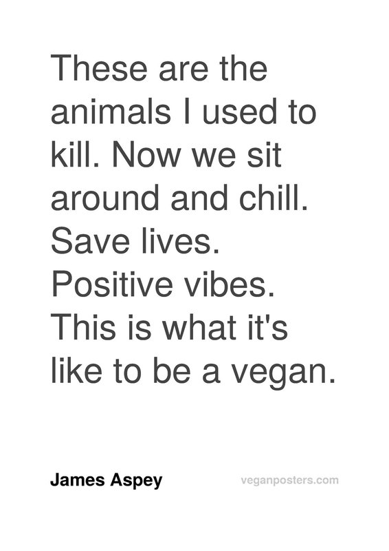 These are the animals I used to kill. Now we sit around and chill. Save lives. Positive vibes. This is what it's like to be a vegan.