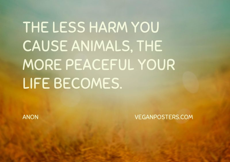 The less harm you cause animals, the more peaceful your life becomes.