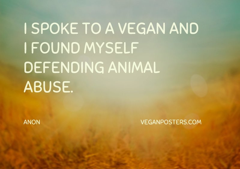 I spoke to a vegan and I found myself defending animal abuse.