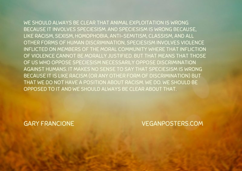 We should always be clear that animal exploitation is wrong because it involves speciesism. And speciesism is wrong because, like racism, sexism, homophobia, anti-semitism, classism, and all other forms of human discrimination, speciesism involves violence inflicted on members of the moral community where that infliction of violence cannot be morally justified. But that means that those of us who oppose speciesism necessarily oppose discrimination against humans. It makes no sense to say that speciesism is wrong because it is like racism (or any other form of discrimination) but that we do not have a position about racism. We do. We should be opposed to it and we should always be clear about that.
