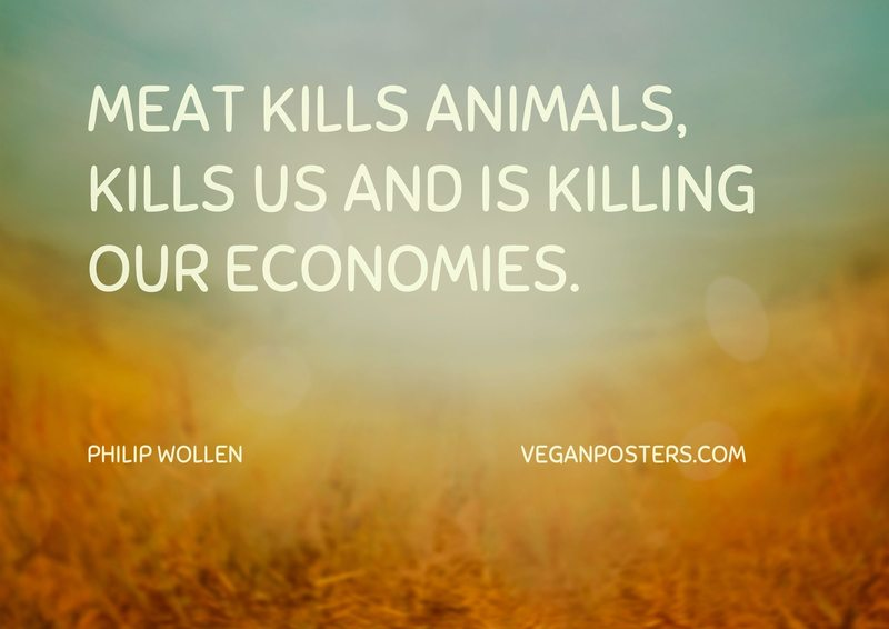 Meat kills animals, kills us and is killing our economies.