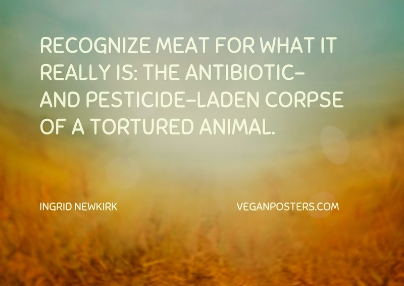 Recognize meat for what it really is: the antibiotic- and pesticide-laden corpse of a tortured animal.