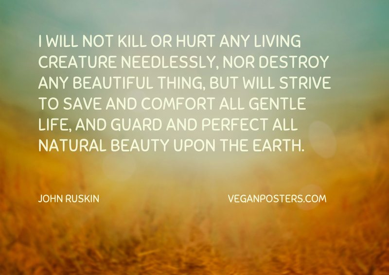 I will not kill or hurt any living creature needlessly, nor destroy any beautiful thing, but will strive to save and comfort all gentle life, and guard and perfect all natural beauty upon the earth.