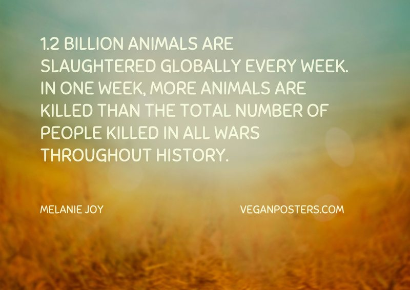 1.2 billion animals are slaughtered globally every week. In one week, more animals are killed than the total number of people killed in all wars throughout history.
